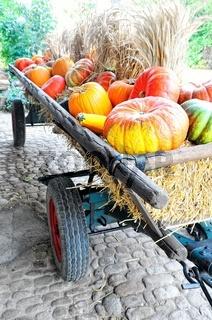 zum Erntedankfest geschmückter Leiterwagen