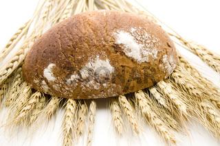 Brot mit Weizen