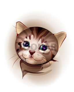 hand drawn portrait of blue-eyed  little kitten.  Kitten is 1 month old.  Watercolor style.