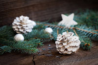 white fir cone and fir branch