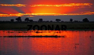Sonnenuntergang am Chobe, Botswana; Sunset at Chobe river, Botsuana