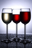 Wine glasses in backlight