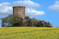Mediaeval tower