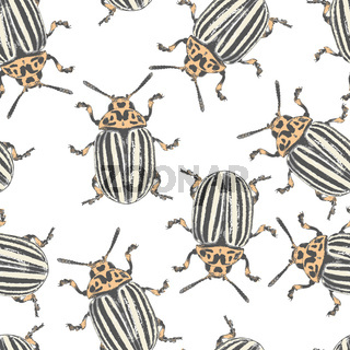 Colorado beetles texture