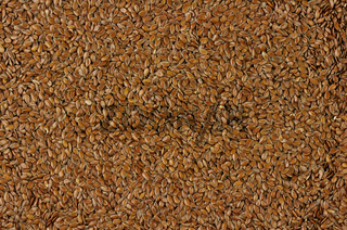 flaxseed background