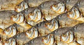 Dry fishes