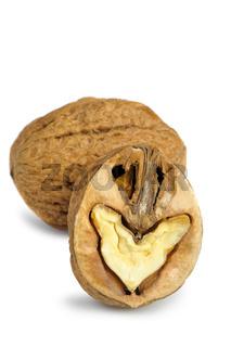 Split walnut