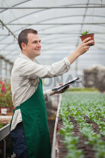 Gardener looking happily at seedling while taking notes