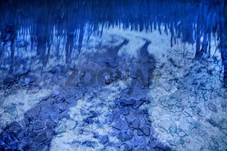 Traumatic path in winter, traumatischer Waldweg im Winter