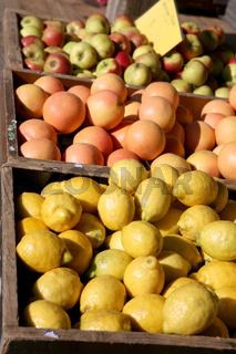 Obstkisten auf dem Markt