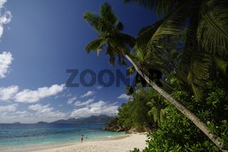 Anse Soleil mit großen Palmen, Seychellen