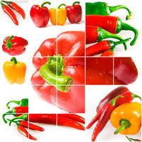 Bright ripe vegetables on white background