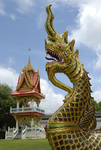 Naga at Wat Khun Chi in Phuket Town
