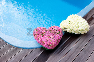 Flower hearts near swimmong pool