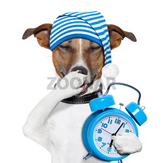 sleepyhead dog tired with clock and funny nightcap