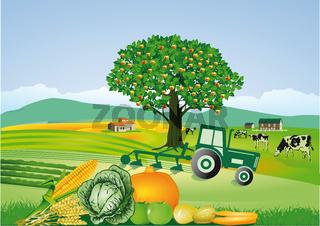 Ernte und Landwirtschaft.jpg