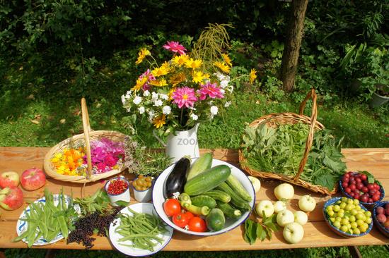 Vegetables, Fruits, Flowers, Herbs