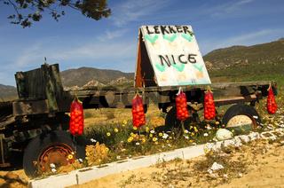Verkaufsstand für Orangen in Citrusdal, Südafrika