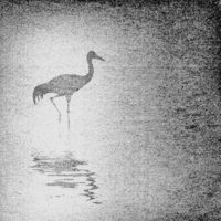 crane silhouette on old paper