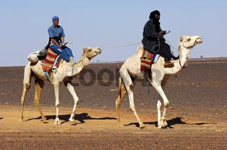 Tuareg Führer und eine erschöpfte Touristin auf ihren Dromedaren auf einem Ausritt