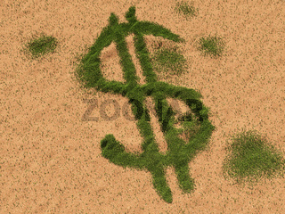 Dollar im Sand
