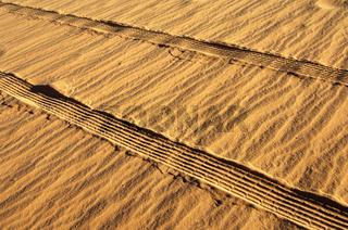 Reifenspuren im feuchten Sand