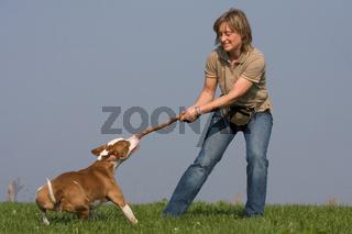 Frau misst ihre Kraft mit Hund