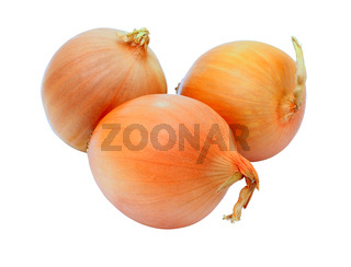 three golden onions, isolated on white background