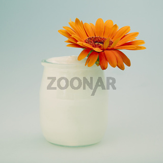 Yogurt With Orange Gerbera
