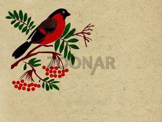 red bullfinch on grunge background