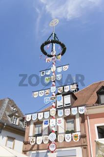 Stadtansichten Speyer2