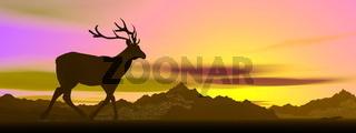 Elk shadow by sunset - 3D render