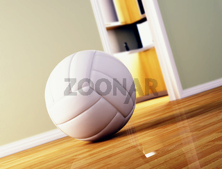 volley ball on wood floor