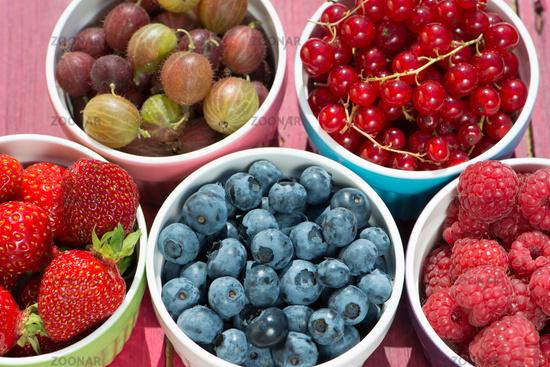 Obstschälchen