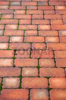 pavement