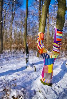 Wollpullis für Bäume