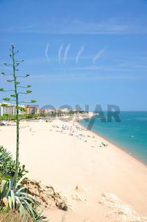 Blick auf den Strand von Calella
