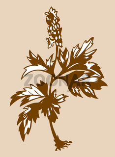 field flower silhouette on brown background
