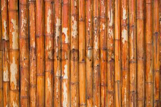 Grunge bamboo fence background