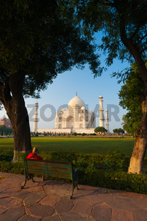 Taj Mahal Trees Footpath Green Bushes Framed V