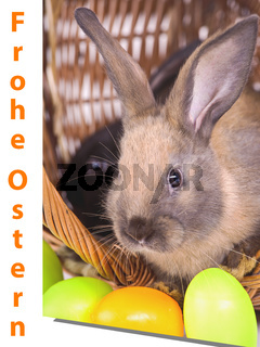 Easter card with rabbit and eggs