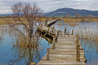 Vrana lake nature park wooden boardwalk