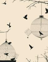 Birds and birdcages postcard