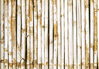 Old Bamboo Wall With Weathered White Paint Backgro