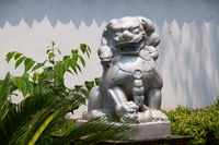 A stone lion of Chinese temple