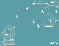 Birds and birdcages postcard 9