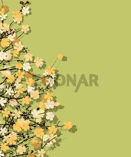 Spring time theme postcard