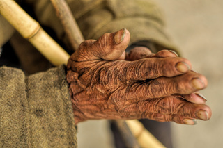 Wrinkled hands of an Indian holding a stick