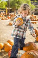 Little Boy Holding His Pumpkin at a Pumpkin Patch