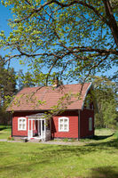 Typical red wooden cottage in Sweden in spring